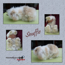 Collage-Snuffie